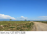Купить «Road in Tanzania», фото № 27871028, снято 24 января 2008 г. (c) Знаменский Олег / Фотобанк Лори