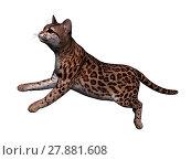 Купить «ocelot schleich cat isolated», фото № 27881608, снято 19 июля 2019 г. (c) PantherMedia / Фотобанк Лори