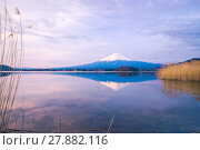 Купить «The mount Fuji in Japan», фото № 27882116, снято 23 июля 2019 г. (c) PantherMedia / Фотобанк Лори