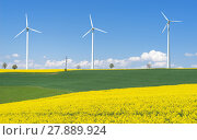 Купить «flowering rapeseed fields with three wind turbines in hilly rural landscape», фото № 27889924, снято 17 марта 2018 г. (c) PantherMedia / Фотобанк Лори
