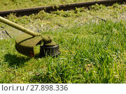 Купить «gardening mowing grass», фото № 27898336, снято 22 января 2019 г. (c) PantherMedia / Фотобанк Лори