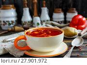 Купить «Thick soup goulash in a ceramic bowl», фото № 27901972, снято 13 февраля 2018 г. (c) Марина Сапрунова / Фотобанк Лори