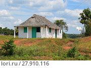 Купить «thatched cottage cuban», фото № 27910116, снято 23 марта 2019 г. (c) PantherMedia / Фотобанк Лори