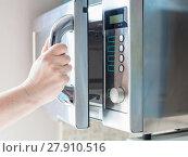 Купить «hand opens microwave oven for cooking food», фото № 27910516, снято 24 февраля 2018 г. (c) PantherMedia / Фотобанк Лори
