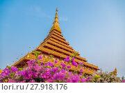 Купить «Wat Nong Wang temple in Khon Kaen,Thailand.», фото № 27918176, снято 23 августа 2019 г. (c) PantherMedia / Фотобанк Лори