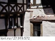 Купить «white doves on enem timbered house in the wartburg», фото № 27919572, снято 9 декабря 2018 г. (c) PantherMedia / Фотобанк Лори