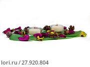 Купить «Fresh colorful composition of two burning candles, fragrant potpourri on monstera leaf», фото № 27920804, снято 21 мая 2018 г. (c) PantherMedia / Фотобанк Лори