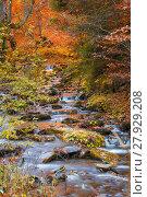 Купить «Mountain stream with stones in late Autumn, saturated color», фото № 27929208, снято 25 мая 2018 г. (c) PantherMedia / Фотобанк Лори