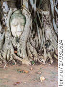 Купить «Head of sandstone Buddha in the tree roots», фото № 27932624, снято 20 февраля 2018 г. (c) PantherMedia / Фотобанк Лори