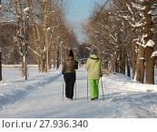 Две женщины с трекинговыми палками идут по зимнему парку. Терлецкий лесопарк. Район Ивановское. Город Москва (2018 год). Стоковое фото, фотограф lana1501 / Фотобанк Лори
