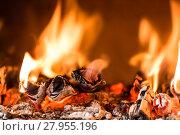 Купить «Flame in a fireplace», фото № 27955196, снято 21 ноября 2019 г. (c) PantherMedia / Фотобанк Лори