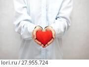Купить «Red heart in hands », фото № 27955724, снято 31 марта 2020 г. (c) PantherMedia / Фотобанк Лори