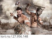 Купить «Gladiators/Warriors», фото № 27956148, снято 3 июня 2020 г. (c) PantherMedia / Фотобанк Лори