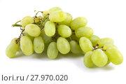 Купить «Гроздь зеленого винограда, изолированно на белом фоне», фото № 27970020, снято 3 августа 2013 г. (c) Литвяк Игорь / Фотобанк Лори