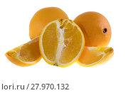 Купить «Апельсины на белом фоне», фото № 27970132, снято 7 сентября 2013 г. (c) Литвяк Игорь / Фотобанк Лори