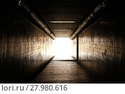 Купить «bright light at the end of the tunnel», фото № 27980616, снято 14 октября 2018 г. (c) PantherMedia / Фотобанк Лори