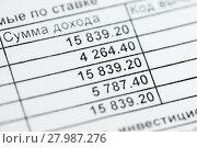Купить «Справка о доходах физического лица крупным планом. Таблица с суммой налогов», эксклюзивное фото № 27987276, снято 8 февраля 2018 г. (c) Игорь Низов / Фотобанк Лори