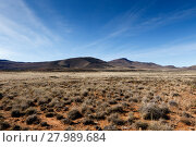 Купить «Green grass field with mountains in Graaff-Reinet», фото № 27989684, снято 19 февраля 2019 г. (c) PantherMedia / Фотобанк Лори