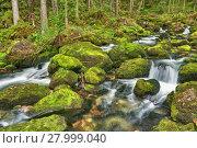 Купить «water waterfall austrians salzburg österreich», фото № 27999040, снято 23 мая 2019 г. (c) PantherMedia / Фотобанк Лори