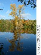 Купить «autumn landscape,dortmund,germany.», фото № 28009972, снято 21 марта 2019 г. (c) PantherMedia / Фотобанк Лори
