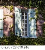 Купить «windows with impact loading», фото № 28010916, снято 14 августа 2018 г. (c) PantherMedia / Фотобанк Лори