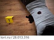 Купить «dead woman body in blood on floor at crime scene», фото № 28013316, снято 5 мая 2017 г. (c) Syda Productions / Фотобанк Лори