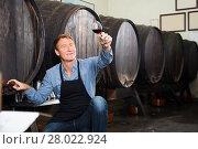 Купить «professional seller man wearing apron suggesting to try glass of wine», фото № 28022924, снято 20 мая 2019 г. (c) Яков Филимонов / Фотобанк Лори