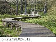 Купить «in the biotope on lake terlago», фото № 28024512, снято 22 апреля 2019 г. (c) PantherMedia / Фотобанк Лори