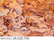 Купить «raw chicken for sale at the weekly market. asia thailand.», фото № 28028756, снято 16 февраля 2019 г. (c) PantherMedia / Фотобанк Лори