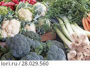 Купить «vegetables at the farmers market», фото № 28029560, снято 6 июля 2020 г. (c) PantherMedia / Фотобанк Лори