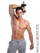 Купить «bodybuilder bodybuilding muscles body building training triceps hantelmann heavily muscled young cut», фото № 28031572, снято 23 февраля 2019 г. (c) PantherMedia / Фотобанк Лори