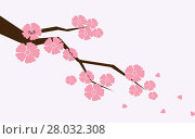 Купить «Branch of sakura with flowers. Cherry blossom branch with petals falling.», фото № 28032308, снято 23 апреля 2018 г. (c) PantherMedia / Фотобанк Лори