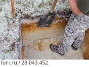 Археология: обработка стенки раскопа с помощью лопаты. Стоковое фото, фотограф Круглов Олег / Фотобанк Лори