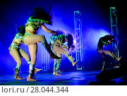 Купить «'Bring It! Live' tour featuring Miss D and her Dancing Dolls at James L Knight Center Featuring: Dancing Dolls Where: Miami, Florida, United States When: 01 Aug 2016 Credit: Johnny Louis/WENN.com», фото № 28044344, снято 1 августа 2016 г. (c) age Fotostock / Фотобанк Лори