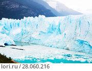 Купить «Glacier Perito Moreno, southeast of Argentina», фото № 28060216, снято 2 февраля 2017 г. (c) Яков Филимонов / Фотобанк Лори