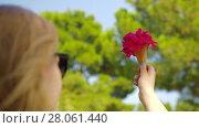 Купить «Woman with red flowers bouquet in waffle cone outdoor», видеоролик № 28061440, снято 10 декабря 2018 г. (c) Данил Руденко / Фотобанк Лори