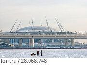 Купить «Люди с собаками на льду Финского залива. Санкт-Петербург», фото № 28068748, снято 15 февраля 2018 г. (c) Румянцева Наталия / Фотобанк Лори