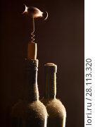 Купить «Wine bottles and corkscrew», фото № 28113320, снято 28 января 2018 г. (c) Роман Сигаев / Фотобанк Лори