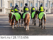 Купить «Отряд женской конной полиции на улице города», фото № 28113656, снято 16 ноября 2017 г. (c) FotograFF / Фотобанк Лори