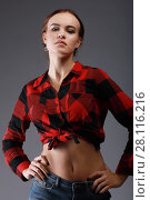 Купить «Young beautiful woman in red checkered shirt poses in grey studio», фото № 28116216, снято 31 октября 2016 г. (c) Losevsky Pavel / Фотобанк Лори
