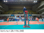 Купить «MOSCOW - NOV 5, 2016: Athletes and referee at volleyball game Dynamo (Moscow) and Ural (Ufa) in Palace of Sports Dynamo», фото № 28116348, снято 5 ноября 2016 г. (c) Losevsky Pavel / Фотобанк Лори