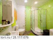 Купить «Empty stylish green bathroom in apartment with shower and toilet», фото № 28117076, снято 22 октября 2016 г. (c) Losevsky Pavel / Фотобанк Лори