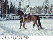 Купить «Winter teenage girl jump horse ride jumping», фото № 28132740, снято 26 января 2014 г. (c) Julia Shepeleva / Фотобанк Лори