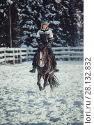 Купить «Winter teenage girl jump horse ride jumping», фото № 28132832, снято 26 января 2014 г. (c) Julia Shepeleva / Фотобанк Лори