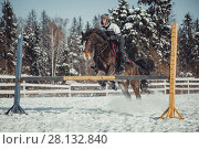 Купить «Winter teenage girl jump horse ride jumping», фото № 28132840, снято 26 января 2014 г. (c) Julia Shepeleva / Фотобанк Лори