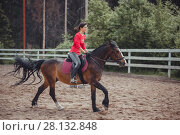 Купить «Spring teenage girl jump horse ride jumping», фото № 28132848, снято 31 мая 2014 г. (c) Julia Shepeleva / Фотобанк Лори
