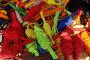 Купить «Разноцветные веревки», фото № 28151360, снято 16 декабря 2017 г. (c) Валерий Денисов / Фотобанк Лори