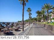 Пляж Playa del Camison и пешеходная аллея Франсиско Андраде Фумеро, город Лос Кристианос, остров Тенерифе, Канары, Испания (2016 год). Редакционное фото, фотограф Кекяляйнен Андрей / Фотобанк Лори