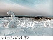 Купить «Зимний пейзаж. Вид с горы Кивакка на гору Нуорунен. Северная Карелия. Россия», фото № 28151780, снято 8 марта 2018 г. (c) Наталья Осипова / Фотобанк Лори