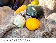 Купить «Agriculture harvested various fresh vegetables on the coarse linen cloth», фото № 28152672, снято 23 сентября 2017 г. (c) FotograFF / Фотобанк Лори